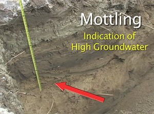 Mottling (coloring) determines high groundwater mark